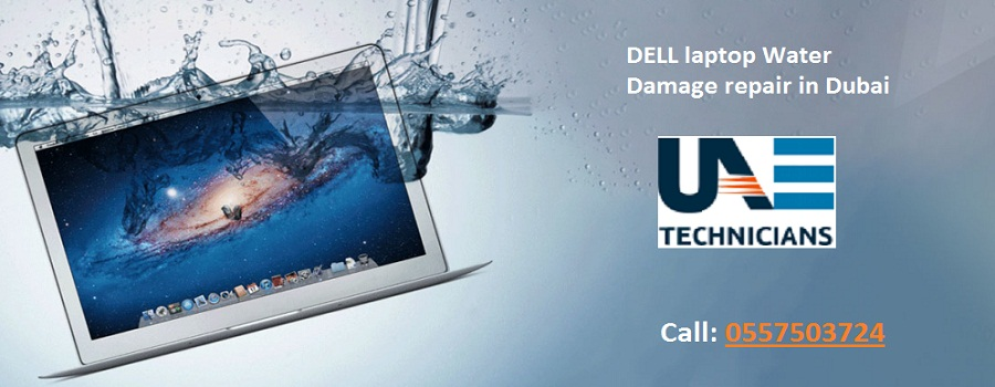 DELL laptop Water Damage