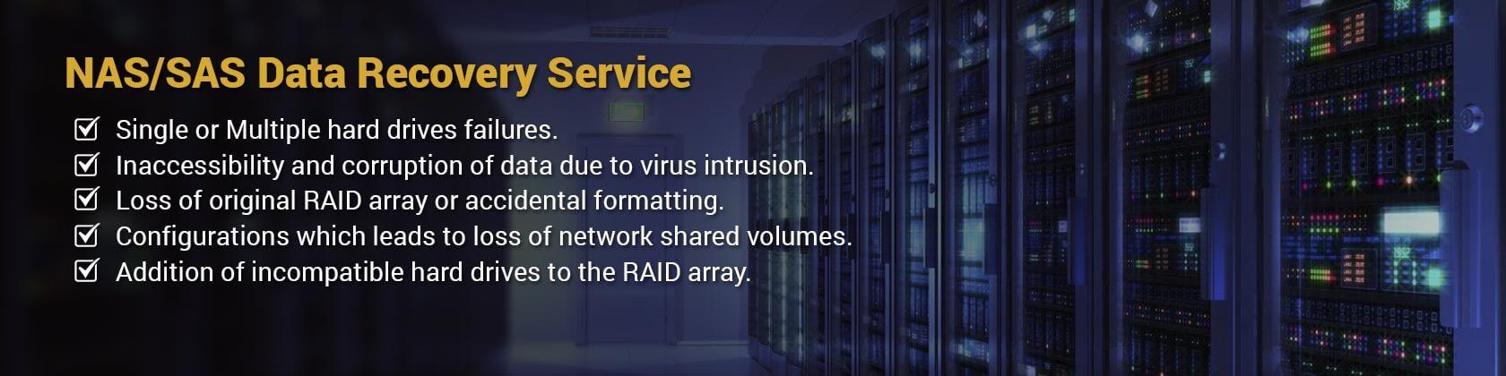 NAS/SAS data recovery
