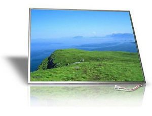HP Laptop DV6000 LCD