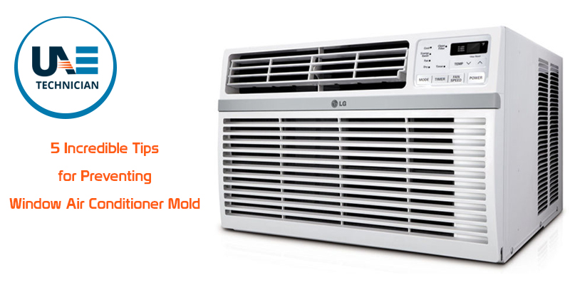 Tips for Preventing Window Air Conditioner Mold