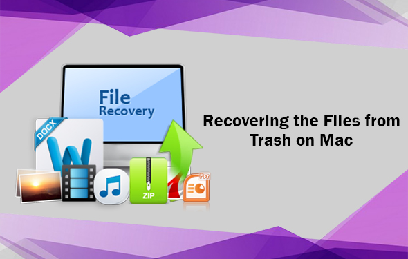 Recovering the Files from Trash on Mac