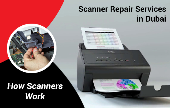 A Comprehensive Guide on how Scanners Work