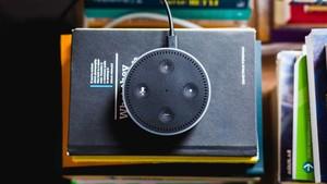 smart-speaker-alexa-google